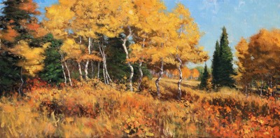 20 x 40    Wyoming Gold     Oil