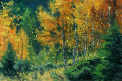 8 x 12     Autumn Warmth Study    Oil