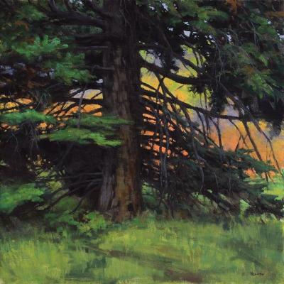 24 x 24      September Pine      Oil
