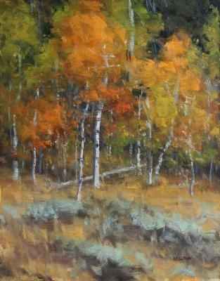 14 x 11     Aspens in Autumn Study     Oil