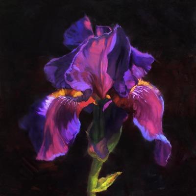 36 x 36     April's Gift     Oil