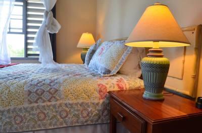Beautiful Suites in Sunny Jamaica!