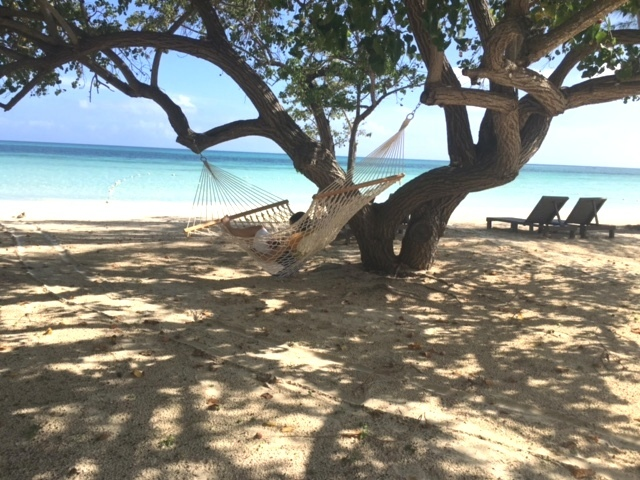 Jamaica Relaxation!  Captain's Cove Beachfront rentals in Falmouth, Jamaica.