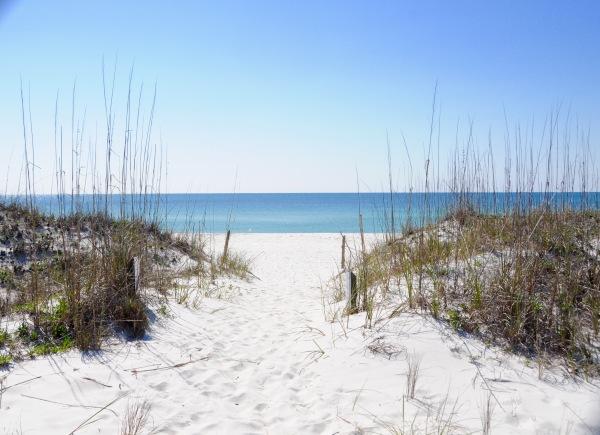 a Florida simple beach wedding.