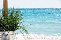 Beach Weddings in Pensacola FL-