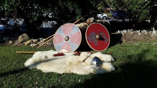 Austlend Vikings