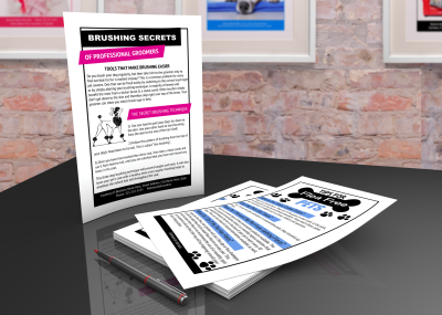 Customer education handout printables for dog grooming business