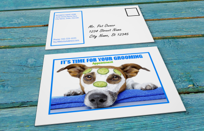 Grooming appointment reminder postcards template