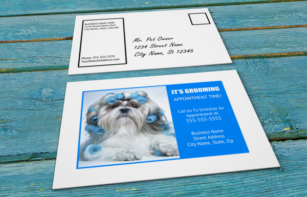 grooming business appointment reminder postcards 3