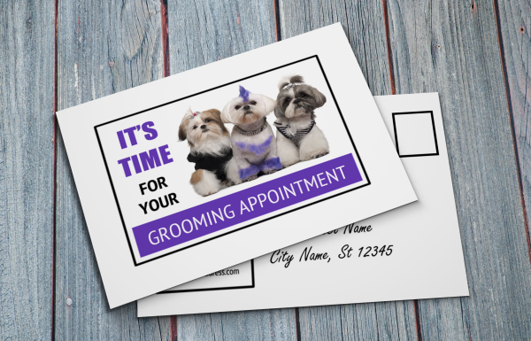 grooming business appointment reminder postcards 2