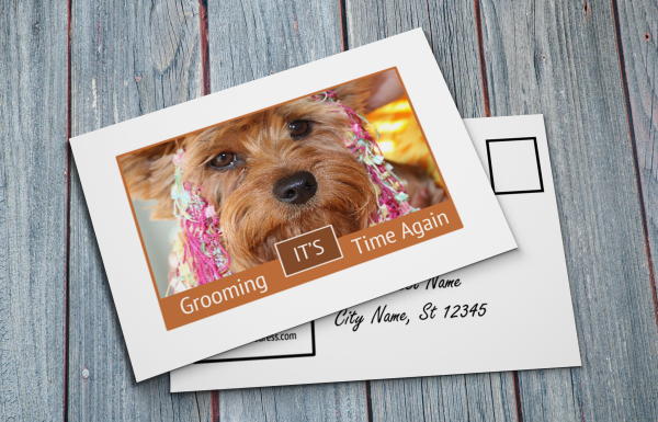 grooming business appointment reminder postcards 5