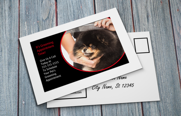 grooming business appointment reminder postcards 11