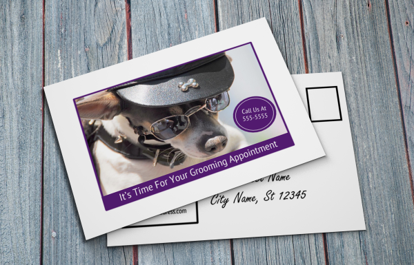 grooming business appointment reminder postcards 12