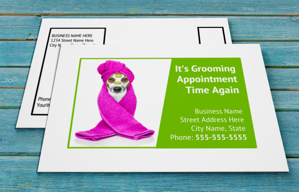 grooming business appointment reminder postcards 16