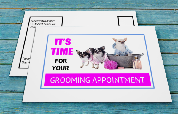 grooming business appointment reminder postcards 17