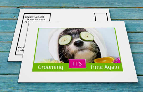 grooming business appointment reminder postcards 19