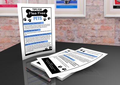 36 Printable pet grooming promotional materials