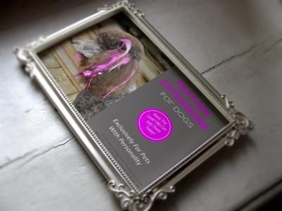 Pet grooming services profit program printables