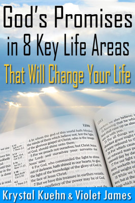 God's Promises in 8 Key Life Areas
