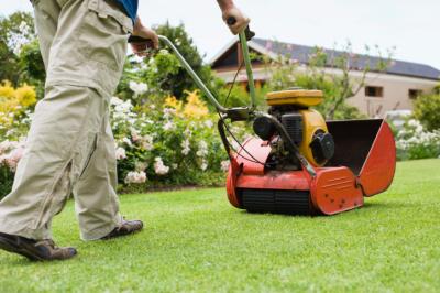 Core Aeration & Seeding - Lawn Care