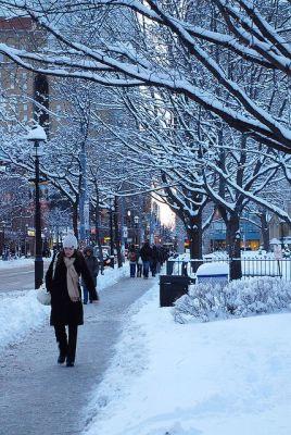 Toronto street scene in snowy weather