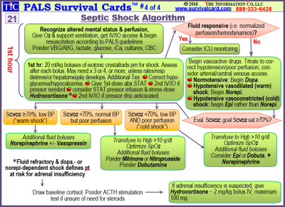 [PDF] Acls Quick Review Study Cards Download eBook for Free