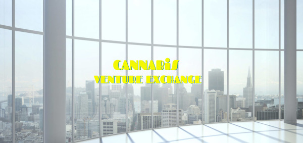 CANNABIS VENTURE EXCHANGE