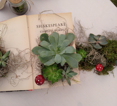 Shakespeare, toadstools and succulents!  DIY styling ideas.