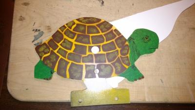 Box Turtle $65
