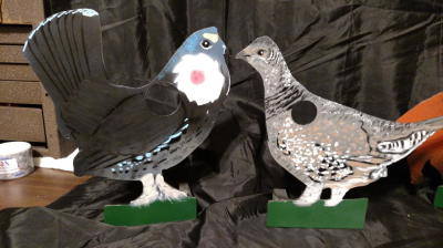 Blue Grouse Male & Female $65 each
