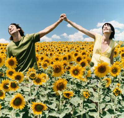 Eye Doctor Grand Junction, sunflower