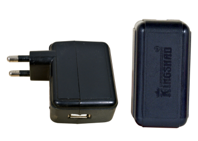 2 AMP USB Charger