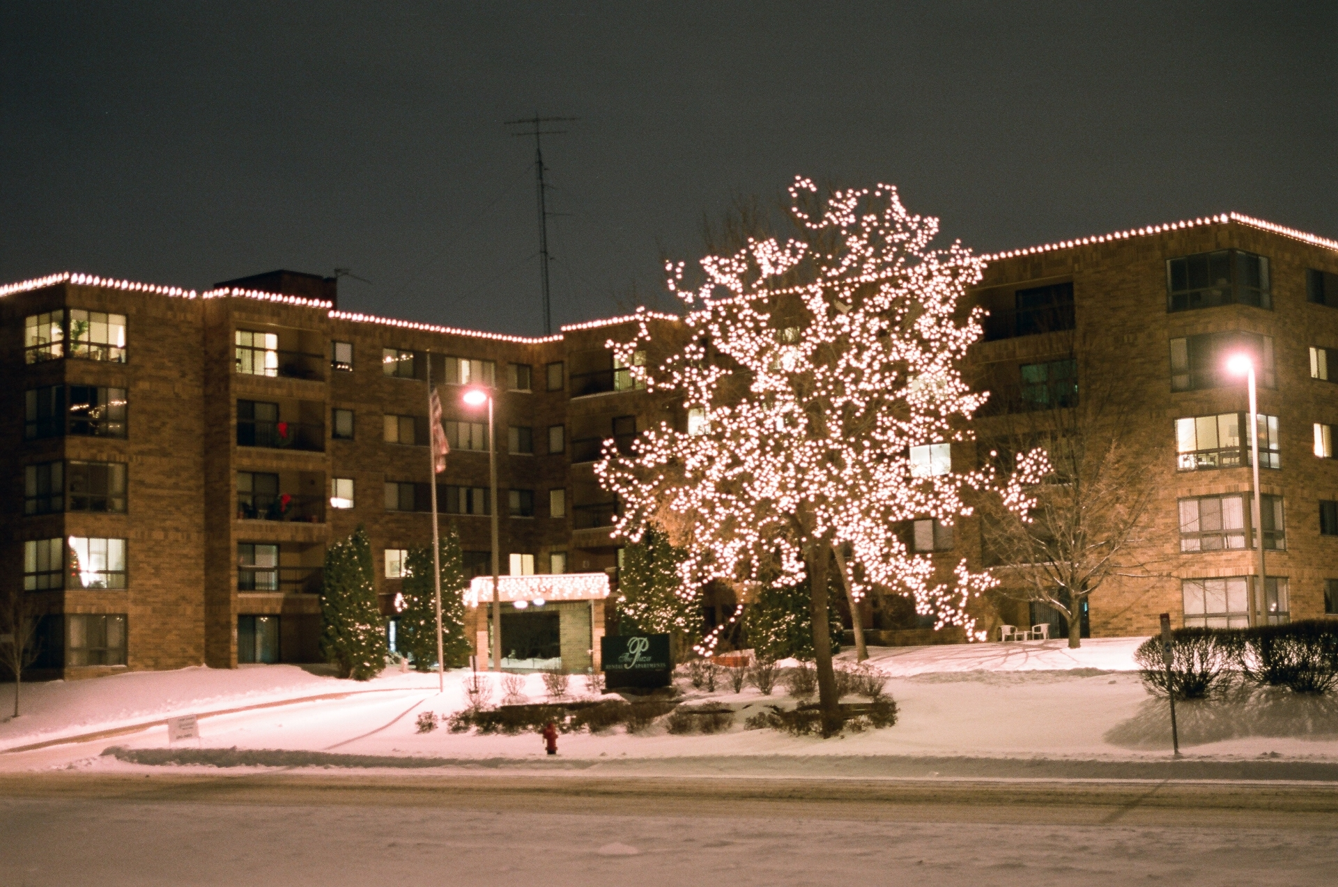 Classic LED Holiday lighting on Parapet and Tree