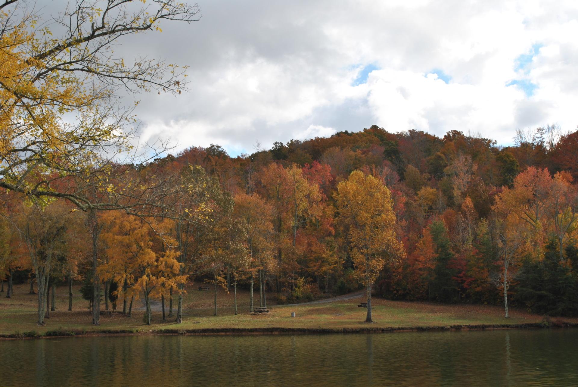 Rhea Springs Park
