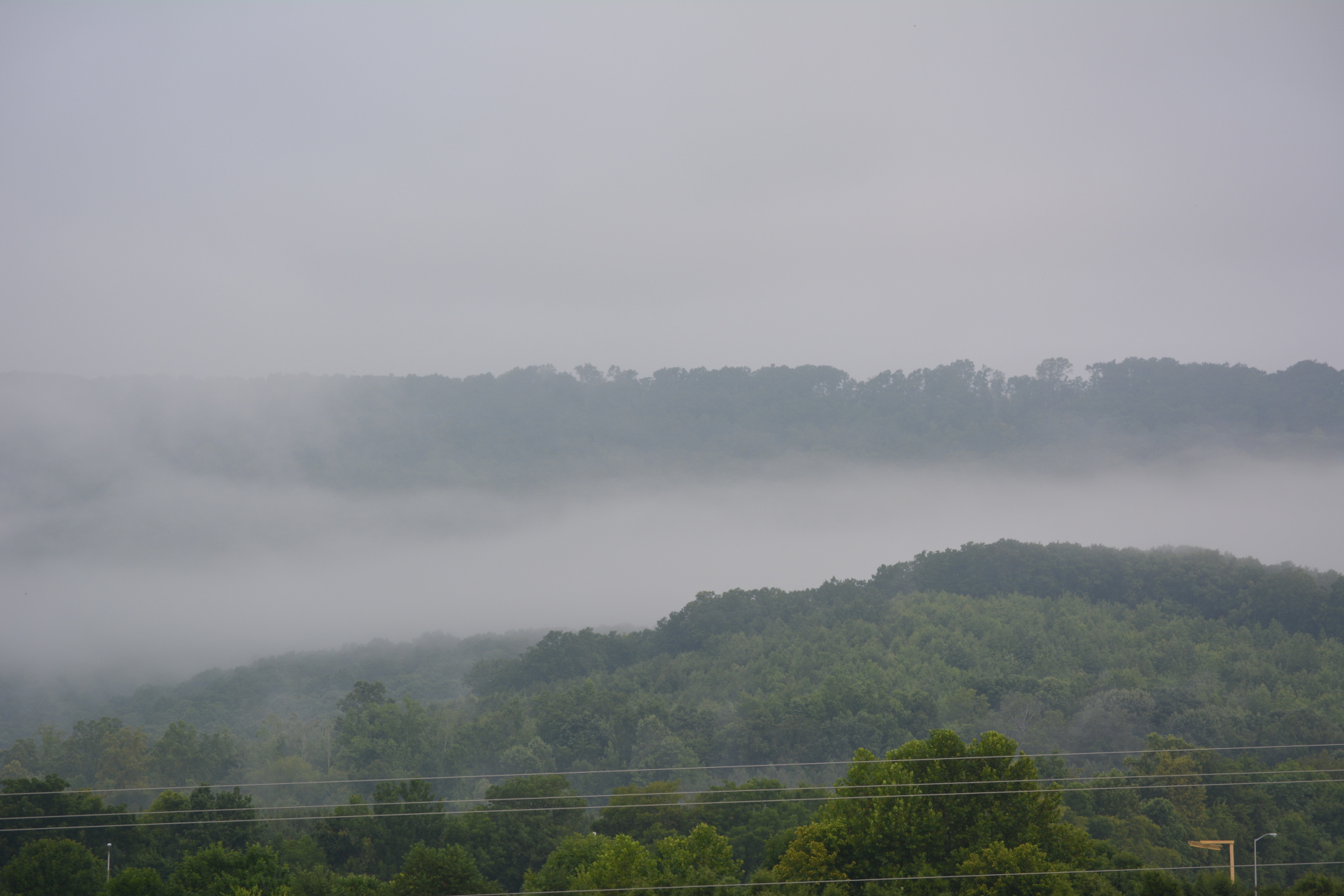 Spring City Fog