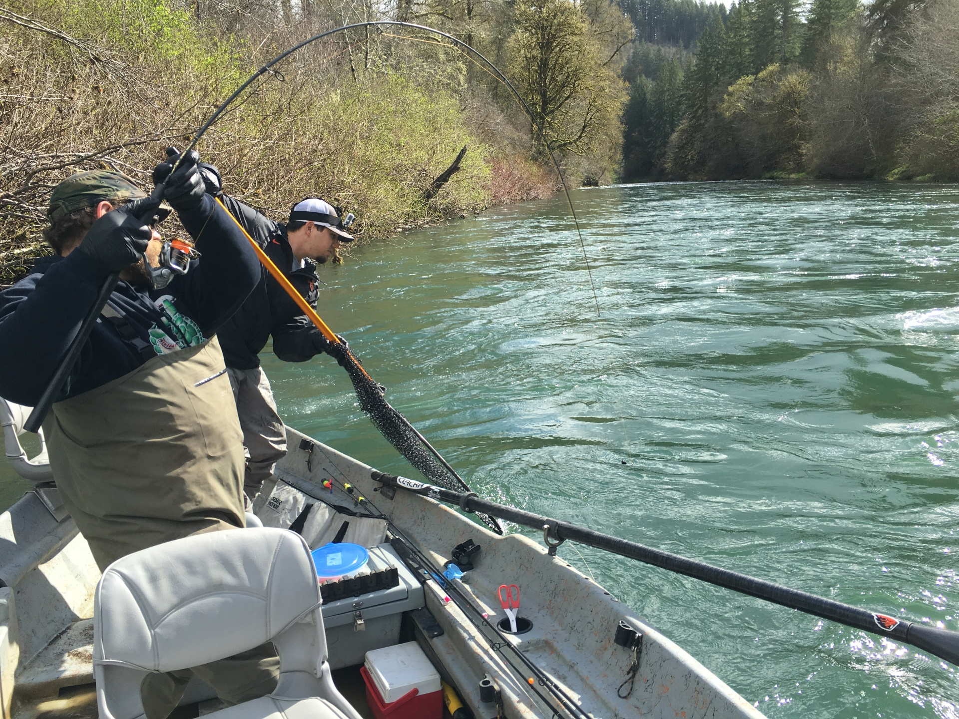 alsea, river, greg hedricks guide service, steelhead, winter steelhead, salmon, fall chinook, spring chinook, coho, king, clackacraft, clackamax, drift boat, rogue rod, summer steelhead