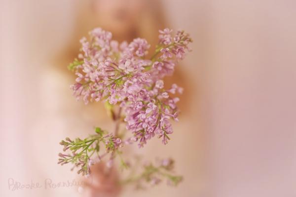 Springtime Renewal