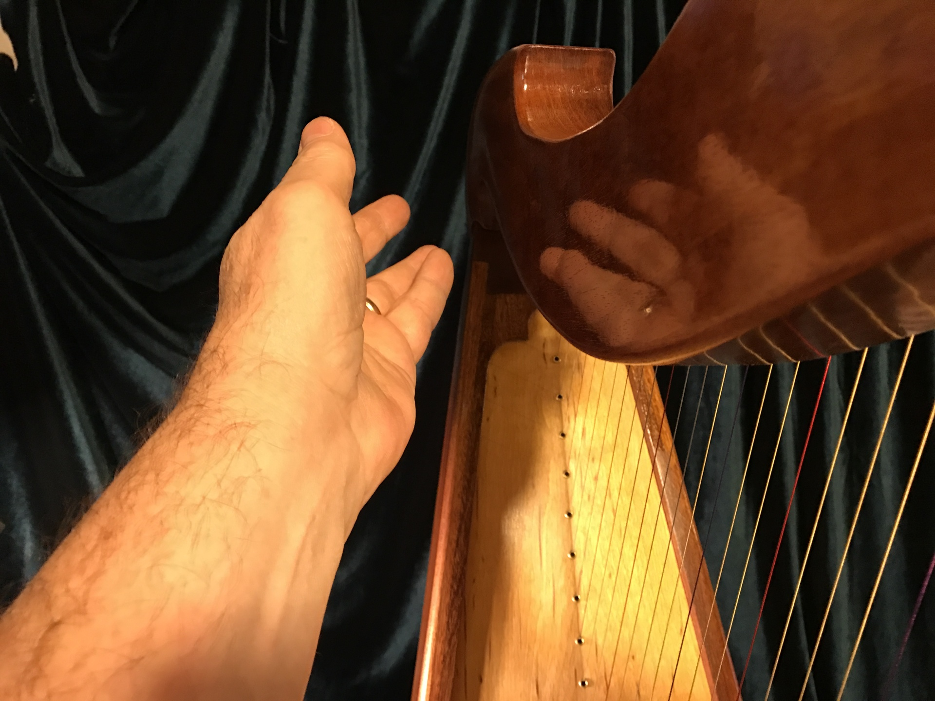French Polishing Harps