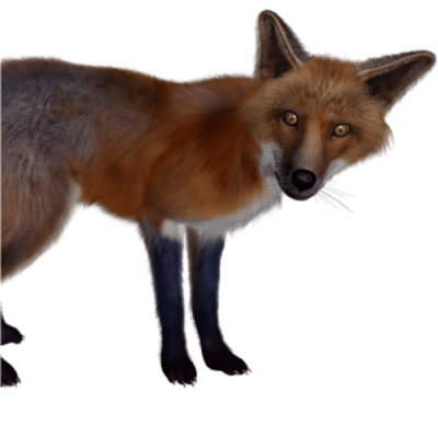 Non-Compete? Chained to a FOX by contract
