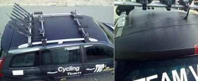 Roof Wrap with Black Carbon Fibre Sticker