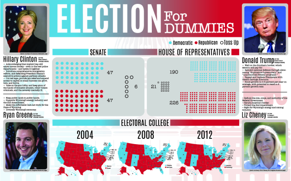 Election for Dummies
