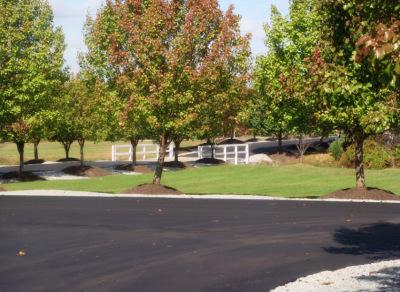 Our Memorial Park