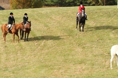 Riding Clubs Liability
