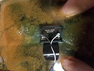 45 min Detox Output