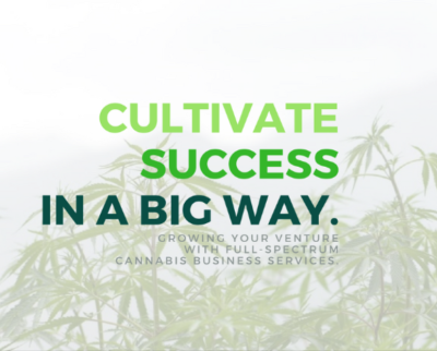 Start a Marijuana Business NOW!