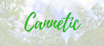 Cannetic Group: Cannabis Business Experts