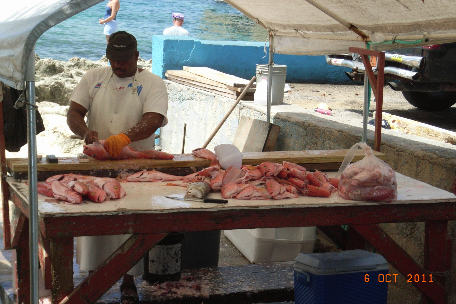 beachside fish market