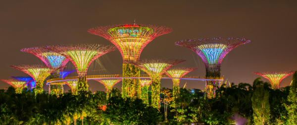 Night Shot - Gardens by the Bay