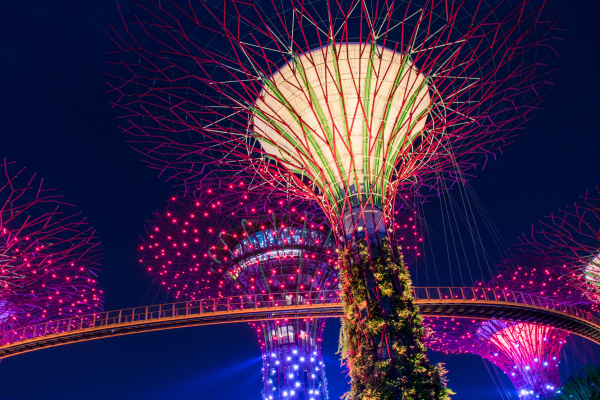 Close Up - Gardens by the Bay