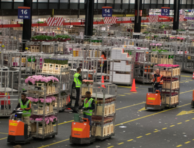Royal FloraHolland | Aalsmeer